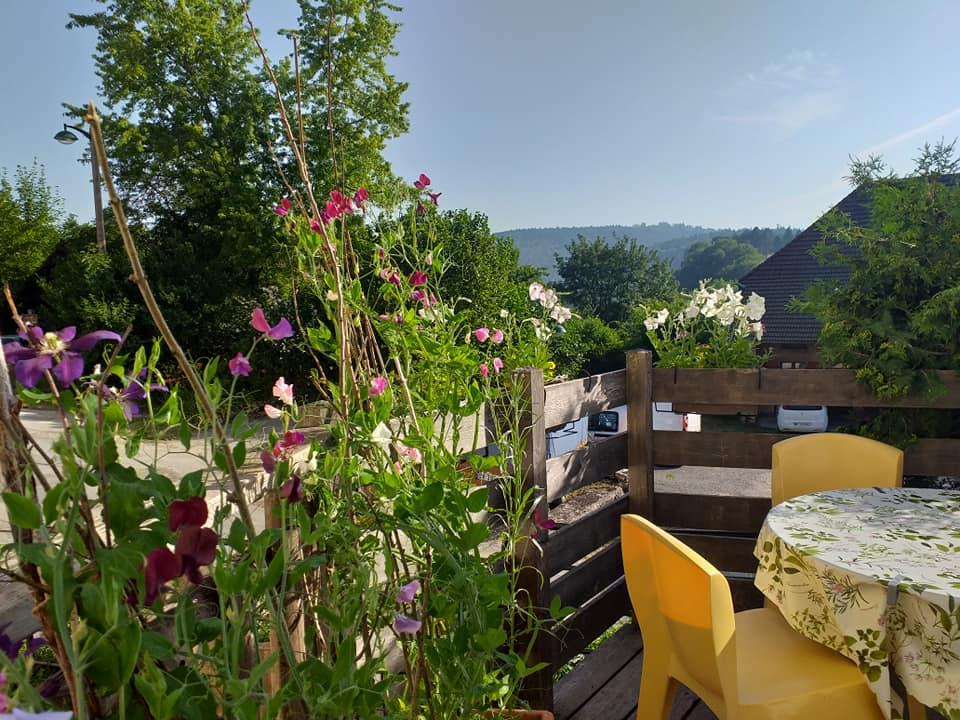 terrasse fleurs 4